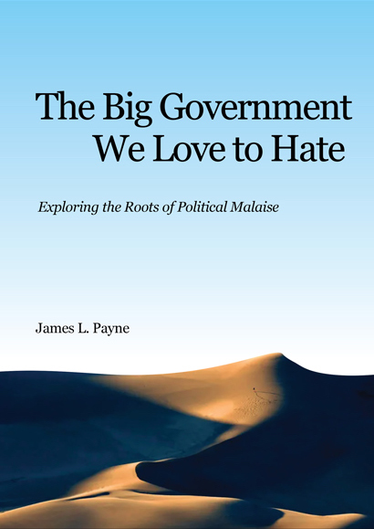 The Big Government We Love to Hate book cover